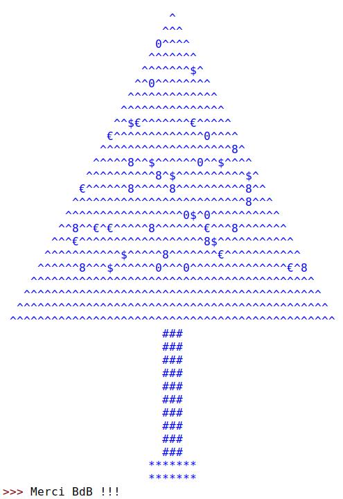 cm 2019-12-25 Joyeux Noël et merci BdB